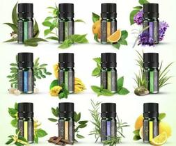 Anjou Essential Oils Set, Upgraded Top 12 100 Pure Aromather